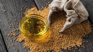 Полезно ли горчичное масло, как применяется в кулинарии и лечебных целях