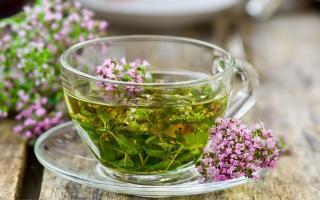 Чем полезен и как приготовить чай с чабрецом: уникальные свойства напитка