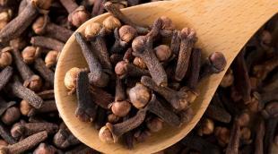 Специя гвоздика: лечебные свойства ароматной пряности, целебные и кулинарные рецепты с её использованием