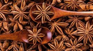 Что это за специя «анис звездчатый»: полезные свойства и применение бадьяна