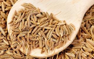 Приправа зира (кумин): применение ароматной специи, полезные свойства и особенности использования