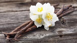 Стручковая натуральная ваниль: как использовать пряность в кулинарии
